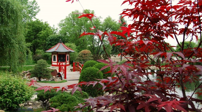 Save the Date: 2014 Normandale Japanese Garden Festival